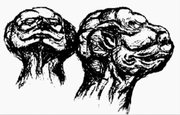 il design con la testa a fungo
